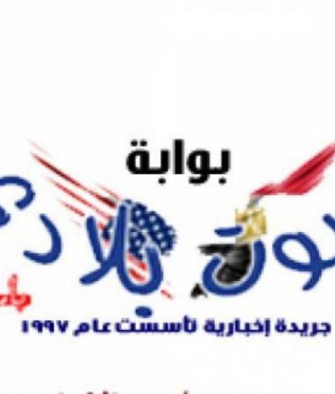 هاجر أحمد وأحمد الحداد .. رحلة حب كللت بالزواج .. صور
