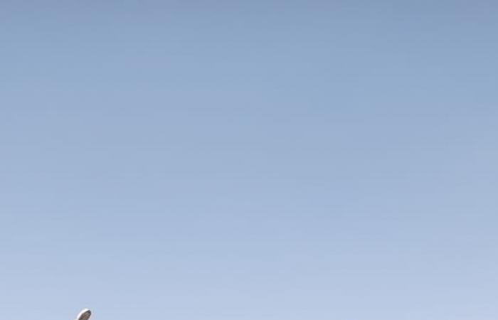 شون وصوامع المحافظات تستقبل القمح حتى ليلة العيد.. الزراعة تعلن حصاد 2 مليون فدان وتوريد 2 مليون طن للتموين.. توريد 9316 طنا بالأقصر و159330 طنا بالبحيرة.. القليوبية تستقبل 114930 طنا