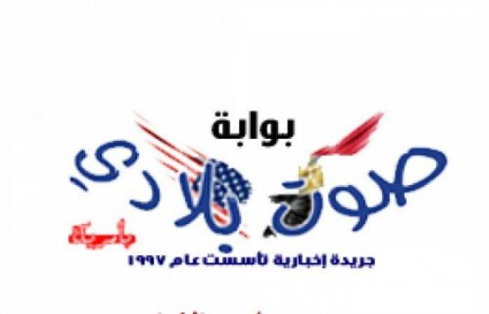 رامى جمال يرفع شعار كامل العدد فى حفل الإسكندرية.. ويعلق: ملحقتش أشبع منكم